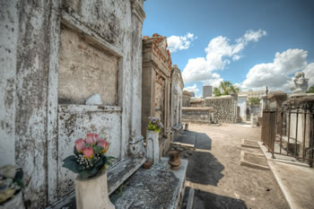 An image from St. Louis Cemetery, where we do Cemetery Tours in New Orleans