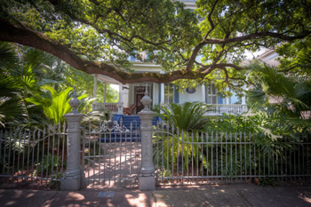 A Historic Home in the Garden District