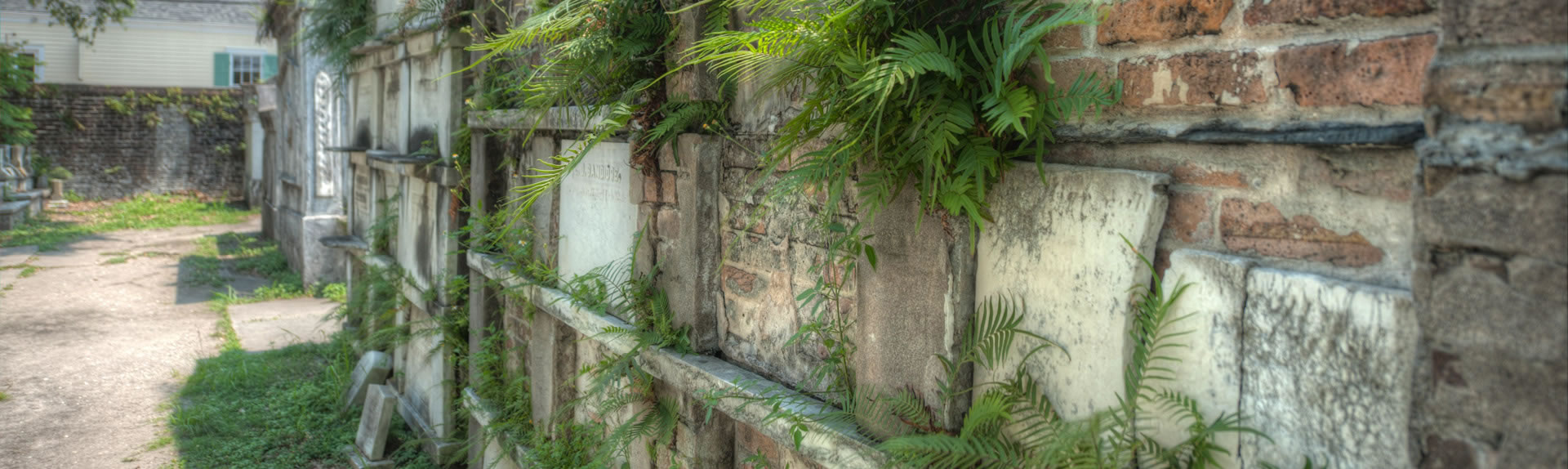 Lafayette Cemetery, on our Garden District Tour