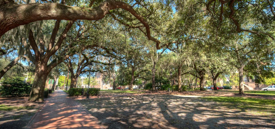 Slave Burials in Calhoun Square